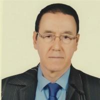إبراهيم القادري بوتشيش