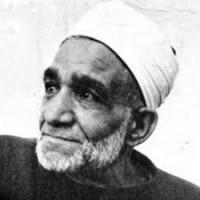 محمود شلتوت