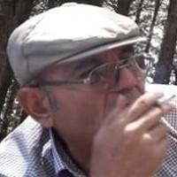 برهان محمد سيفو