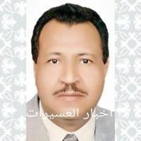 حسن خضيري أحمد
