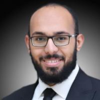 محمد أبوالعنين ربيع
