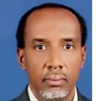 محمد وقيع الله أحمد