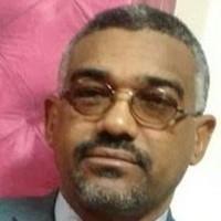 أ.د. محمد عبد الله سليمان