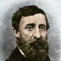 ديفيد هنري ثورو