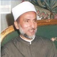 محمد سيد أحمد المسير