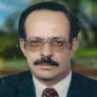 محمد حسين الفرح