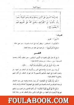 التفسير الوسيط للقرآن الكريم - المجلد الثاني