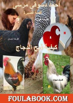 نقد لقصة ذبح الدجاج للقاص أحمد دسوقي - السيد حسن